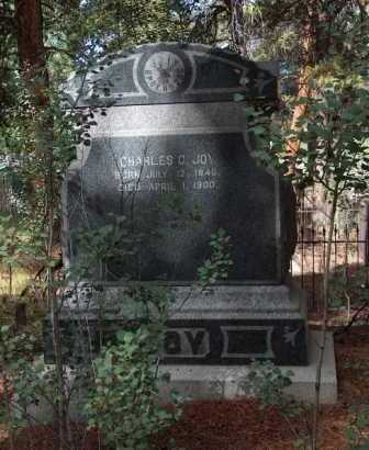 JOY, CHARLES C - Lake County, Colorado   CHARLES C JOY - Colorado Gravestone Photos