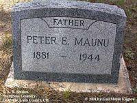 MAUNU, PETER E. - Lake County, Colorado   PETER E. MAUNU - Colorado Gravestone Photos