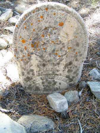 MCBREEN, WILLIAM - Lake County, Colorado | WILLIAM MCBREEN - Colorado Gravestone Photos