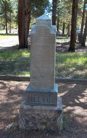 MELTON, CHARLES P. - Lake County, Colorado | CHARLES P. MELTON - Colorado Gravestone Photos