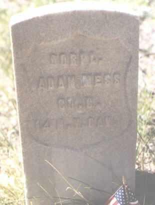 MESS, ADAM - Lake County, Colorado   ADAM MESS - Colorado Gravestone Photos