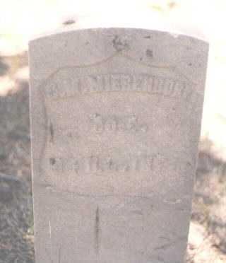 MIERENDORF, CHARLES M. - Lake County, Colorado   CHARLES M. MIERENDORF - Colorado Gravestone Photos