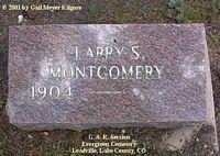 MONTGOMERY, LARRY S. - Lake County, Colorado | LARRY S. MONTGOMERY - Colorado Gravestone Photos