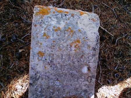 MORAN, NATHAN - Lake County, Colorado | NATHAN MORAN - Colorado Gravestone Photos