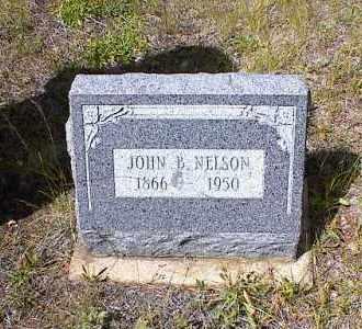 NELSON, JOHN B. - Lake County, Colorado | JOHN B. NELSON - Colorado Gravestone Photos