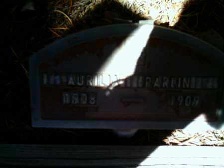 PARLIN, AURILIA - Lake County, Colorado | AURILIA PARLIN - Colorado Gravestone Photos