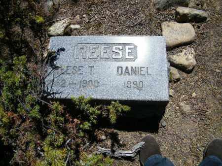 REESE, REESE T. - Lake County, Colorado | REESE T. REESE - Colorado Gravestone Photos