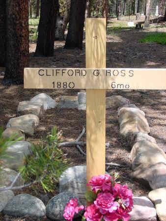 ROSS, CLIFFORD GORDON - Lake County, Colorado | CLIFFORD GORDON ROSS - Colorado Gravestone Photos