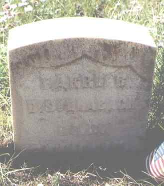 SCHLABACH, D. - Lake County, Colorado | D. SCHLABACH - Colorado Gravestone Photos
