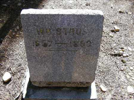 STRUB, WILLIAM - Lake County, Colorado | WILLIAM STRUB - Colorado Gravestone Photos