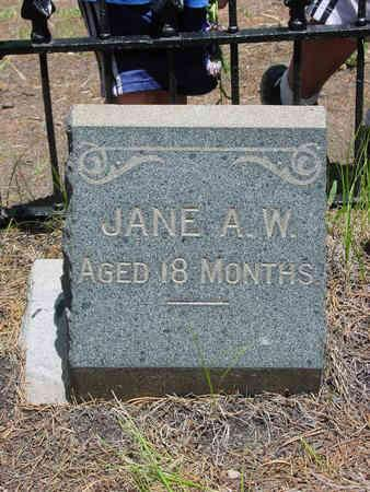 WALSH, JANE ADELAIDE - Lake County, Colorado | JANE ADELAIDE WALSH - Colorado Gravestone Photos