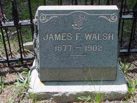 WALSH, JAMES FRANCIS - Lake County, Colorado | JAMES FRANCIS WALSH - Colorado Gravestone Photos