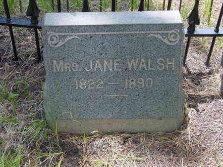 WALSH, JANE MRS. - Lake County, Colorado   JANE MRS. WALSH - Colorado Gravestone Photos