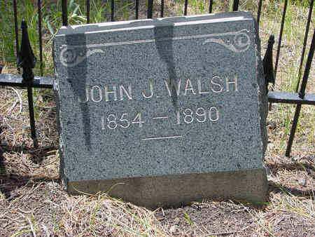 WALSH, JOHN J - Lake County, Colorado | JOHN J WALSH - Colorado Gravestone Photos