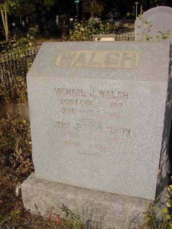 WALSH, MICHAEL - Lake County, Colorado   MICHAEL WALSH - Colorado Gravestone Photos