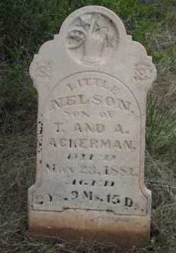 ACKERMAN, NELSON - La Plata County, Colorado | NELSON ACKERMAN - Colorado Gravestone Photos