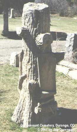 ANHEIR, ALAN RAYMOND - La Plata County, Colorado   ALAN RAYMOND ANHEIR - Colorado Gravestone Photos