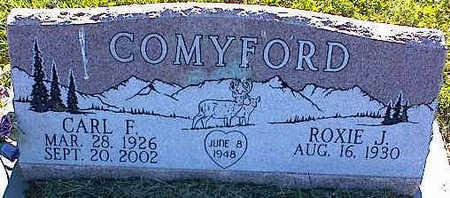 COMYFORD, CARL F. - La Plata County, Colorado | CARL F. COMYFORD - Colorado Gravestone Photos
