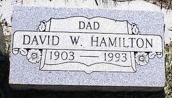 HAMILTON, DAVID W. - La Plata County, Colorado | DAVID W. HAMILTON - Colorado Gravestone Photos