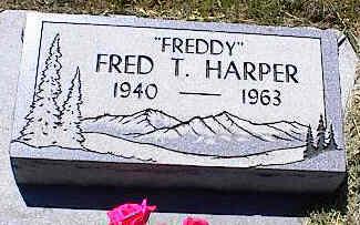 HARPER, FRED T. - La Plata County, Colorado   FRED T. HARPER - Colorado Gravestone Photos