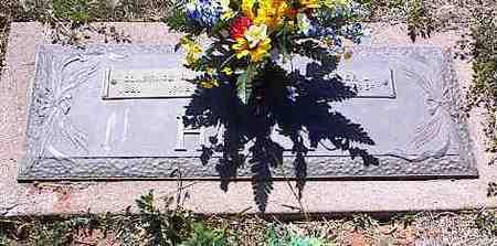 HINER, CLARENCE E. - La Plata County, Colorado | CLARENCE E. HINER - Colorado Gravestone Photos