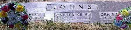 JOHNS, ORA A.? - La Plata County, Colorado | ORA A.? JOHNS - Colorado Gravestone Photos