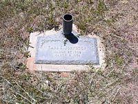JOHNSTON, EARL E. - La Plata County, Colorado | EARL E. JOHNSTON - Colorado Gravestone Photos