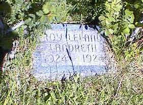 LANDRETH, ROY LELAND - La Plata County, Colorado | ROY LELAND LANDRETH - Colorado Gravestone Photos