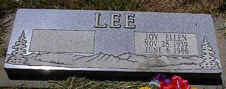 LEE, JOY ELLEN - La Plata County, Colorado | JOY ELLEN LEE - Colorado Gravestone Photos