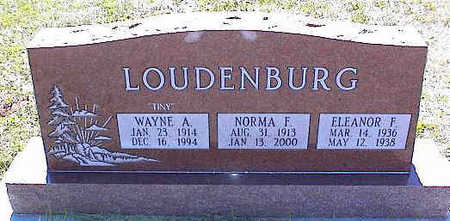 LOUDENBURG, WAYNE A. - La Plata County, Colorado | WAYNE A. LOUDENBURG - Colorado Gravestone Photos