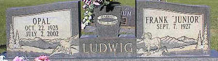 LUDWIG, FRANK - La Plata County, Colorado | FRANK LUDWIG - Colorado Gravestone Photos