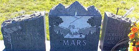 MARS, CECIL W. - La Plata County, Colorado | CECIL W. MARS - Colorado Gravestone Photos