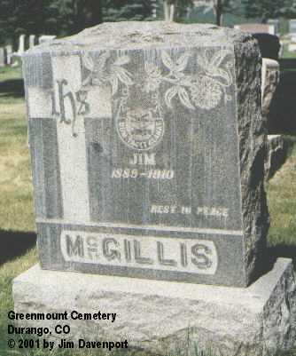 MCGILLIS, JIM - La Plata County, Colorado | JIM MCGILLIS - Colorado Gravestone Photos