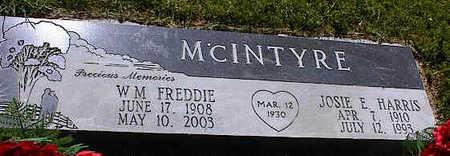 MCINTYRE, JOSIE E. - La Plata County, Colorado | JOSIE E. MCINTYRE - Colorado Gravestone Photos