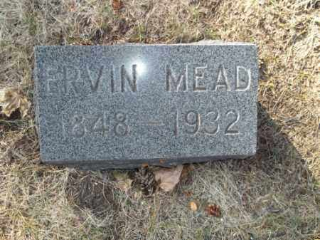 MEAD, ERVIN - La Plata County, Colorado | ERVIN MEAD - Colorado Gravestone Photos
