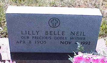NEIL, LILLY BELLE - La Plata County, Colorado | LILLY BELLE NEIL - Colorado Gravestone Photos