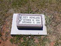 NEWLAND, CICY - La Plata County, Colorado | CICY NEWLAND - Colorado Gravestone Photos