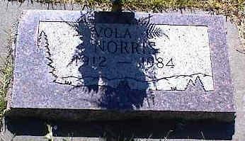 NORRIS, VOLA L. - La Plata County, Colorado | VOLA L. NORRIS - Colorado Gravestone Photos