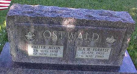 OSTWALD, WALTER ALVIN - La Plata County, Colorado   WALTER ALVIN OSTWALD - Colorado Gravestone Photos