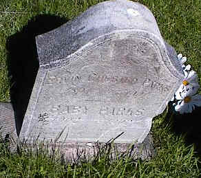 PARKS, ERVIN CHESTER - La Plata County, Colorado | ERVIN CHESTER PARKS - Colorado Gravestone Photos