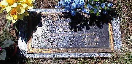 COX PLUMB, WINNIE M. - La Plata County, Colorado | WINNIE M. COX PLUMB - Colorado Gravestone Photos
