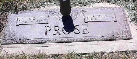 PROSE, ALICE E. - La Plata County, Colorado | ALICE E. PROSE - Colorado Gravestone Photos