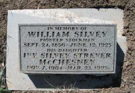SILVEY, WILLIAM - La Plata County, Colorado | WILLIAM SILVEY - Colorado Gravestone Photos