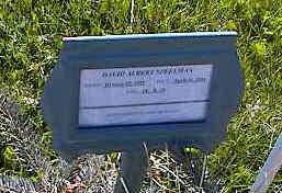SPEELMAN, DAVID ALBERT - La Plata County, Colorado | DAVID ALBERT SPEELMAN - Colorado Gravestone Photos