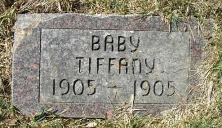 TIFFANY, BABY - La Plata County, Colorado   BABY TIFFANY - Colorado Gravestone Photos