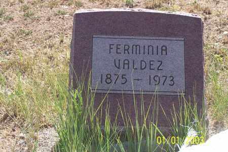VALDEZ, FERMINIA - La Plata County, Colorado   FERMINIA VALDEZ - Colorado Gravestone Photos