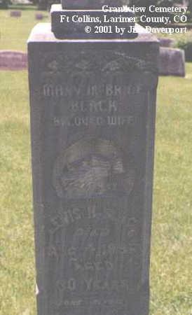 BLACK, LEWIS H. - Larimer County, Colorado | LEWIS H. BLACK - Colorado Gravestone Photos