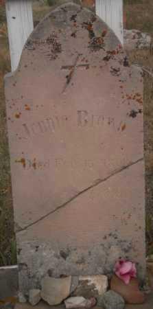 BROWN, JENNIE - Larimer County, Colorado   JENNIE BROWN - Colorado Gravestone Photos