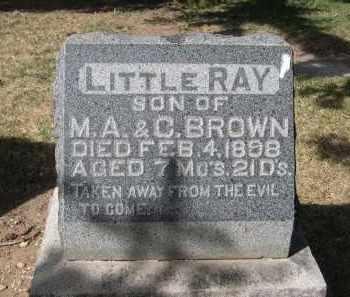 BROWN, LITTLE RAY - Larimer County, Colorado | LITTLE RAY BROWN - Colorado Gravestone Photos