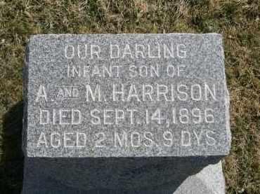 HARRISON, INFANT SON OF A & M. - Larimer County, Colorado | INFANT SON OF A & M. HARRISON - Colorado Gravestone Photos